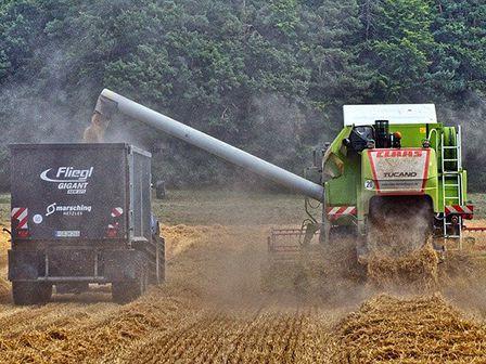 Аграрна промисловість